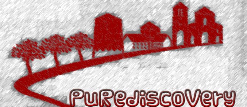 Logo PuRediscovery
